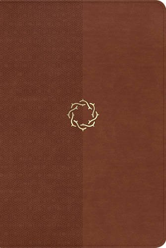 9781433607660: The HCSB Essential Teen Study Bible, Walnut LeatherTouch