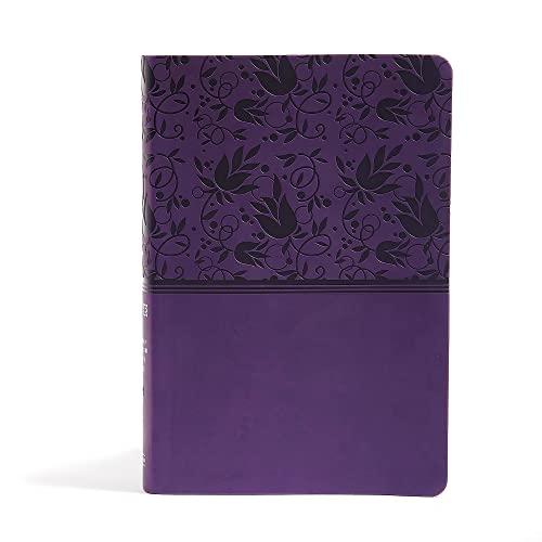 9781433616570: NIV Rainbow Study Bible, Purple LeatherTouch