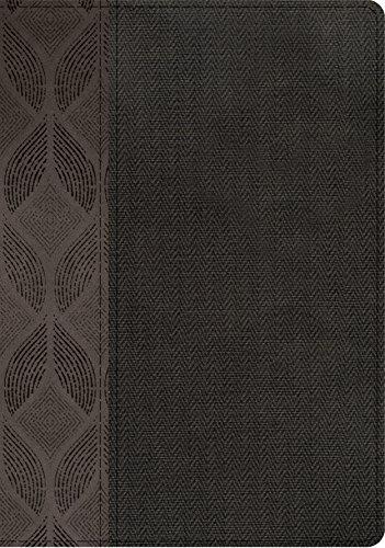 9781433643569: Biblia Compacta Letra Grande-Rvr 1960