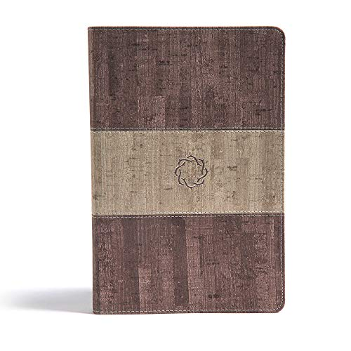 9781433648724: CSB Essential Teen Study Bible, Weathered Gray Cork LeatherTouch