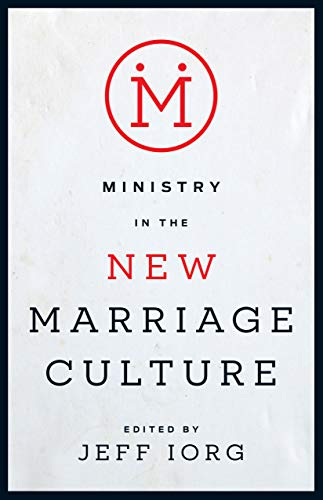 9781433688324: Ministry in the New Marriage Culture