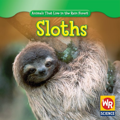 Sloths (Animals That Live in the Rain Forest): Guidone, Julie