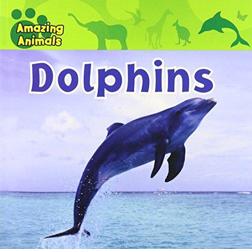 9781433921209: Dolphins (Amazing Animals (Gareth Stevens Paperback))