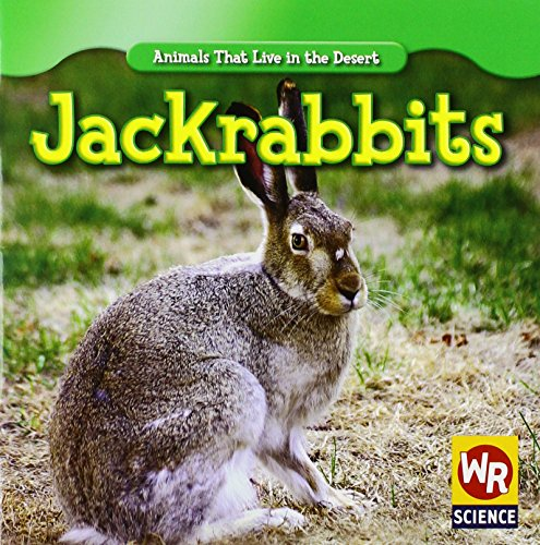 9781433924507: Jackrabbits (Animals That Live in the Desert)