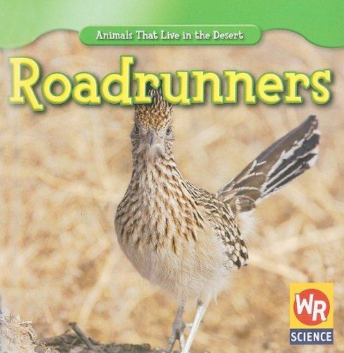9781433924521: Roadrunners (Animals That Live in the Desert)