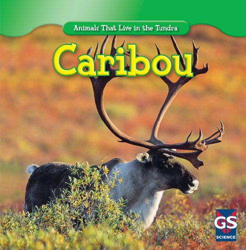 Caribou (Animals That Live in the Tundra): Patrick, Roman