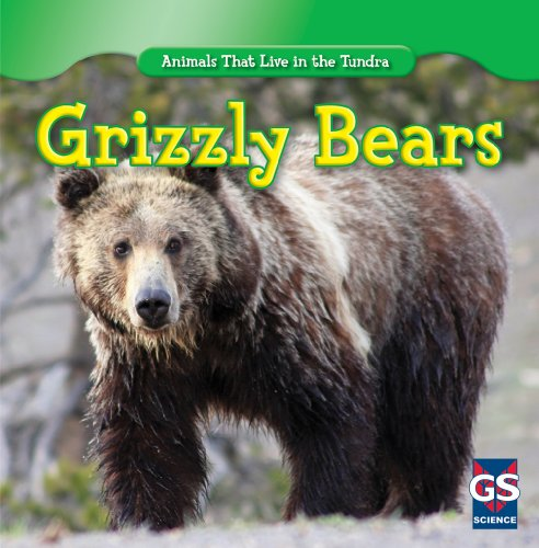 9781433939006: Grizzly Bears (Animals That Live in the Tundra)