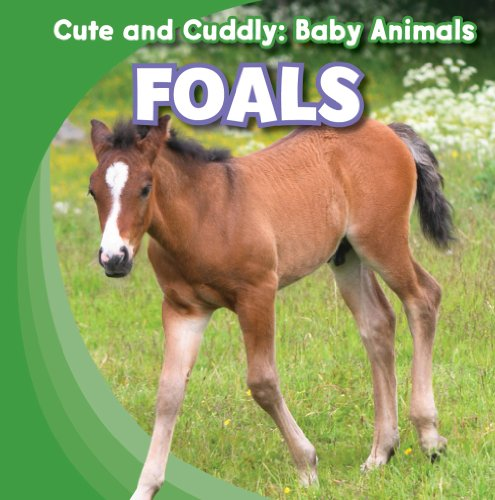 Foals (Cute and Cuddly: Baby Animals): Elora, Grace