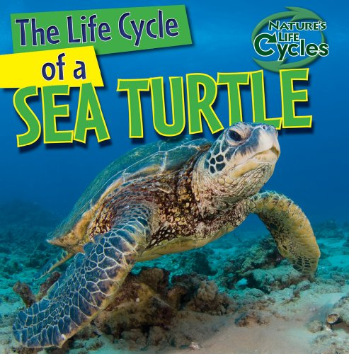 9781433946882: The Life Cycle of a Sea Turtle (Nature's Life Cycles)
