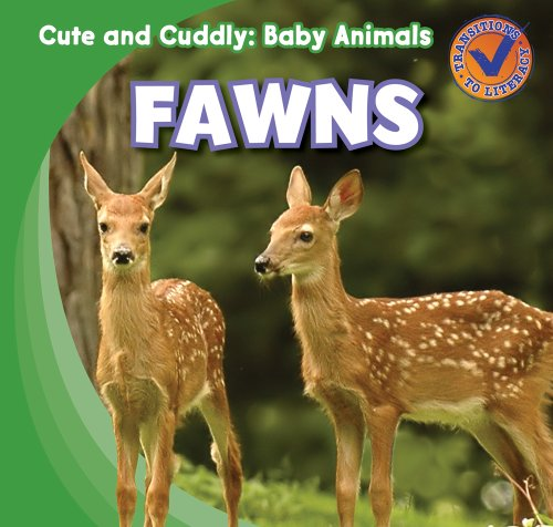 Fawns (Cute and Cuddly: Baby Animals): Katie Kawa