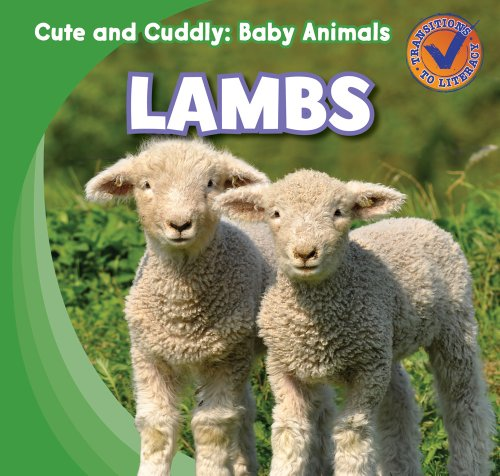 9781433955471: Lambs (Cute and Cuddly: Baby Animals)