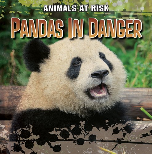 9781433958007: Pandas in Danger (Animals at Risk)