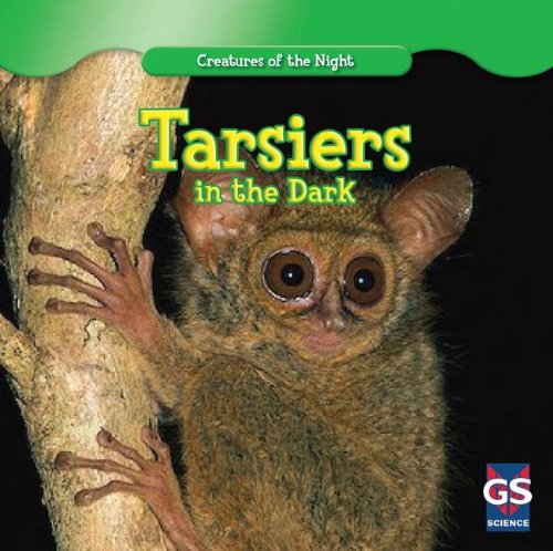 Tarsiers in the Dark (Creatures of the Night): Van Eck, Thomas