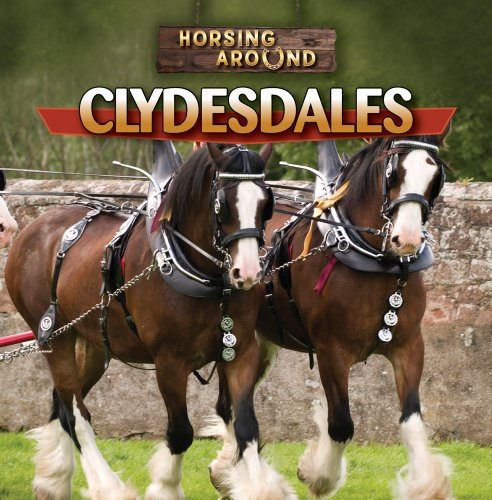 9781433964664: Clydesdales (Horsing Around)