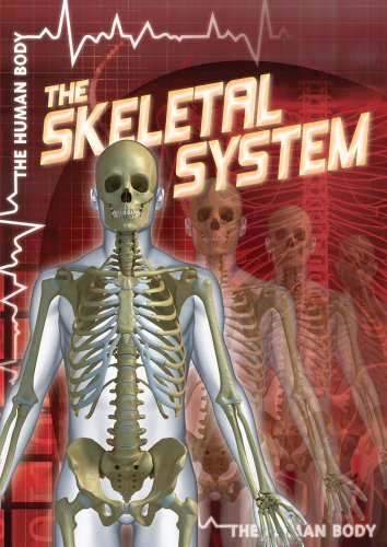 9781433965968: The Skeletal System (The Human Body)
