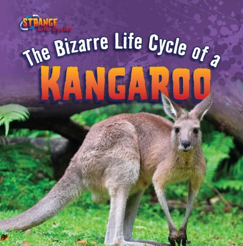 9781433970481: The Bizarre Life Cycle of a Kangaroo (Strange Life Cycles (Gareth Stevens))