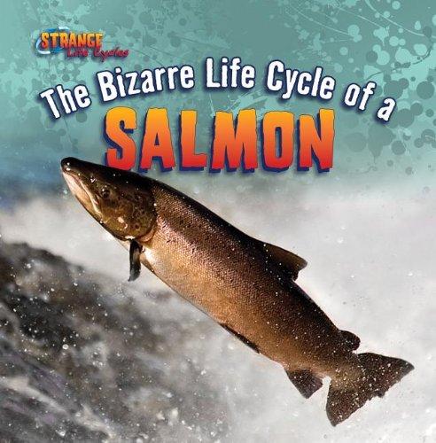 9781433970603: The Bizarre Life Cycle of a Salmon (Strange Life Cycles (Gareth Stevens))