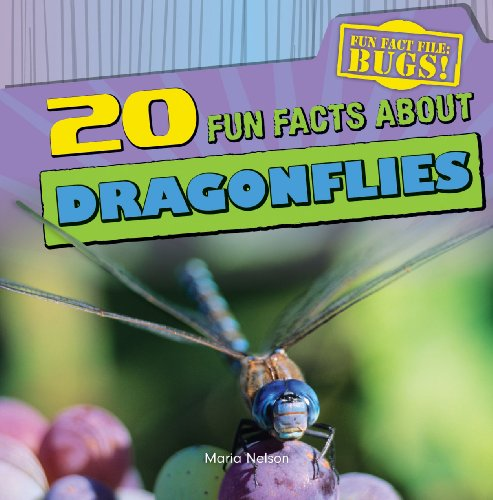 9781433982361: 20 Fun Facts about Dragonflies (Fun Fact File: Bugs!)