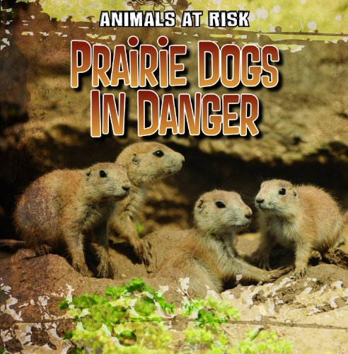 Prairie Dogs in Danger (Animals at Risk): Grucella, A. J.