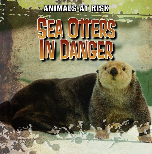 9781433991691: Sea Otters in Danger (Animals at Risk)
