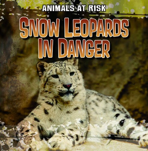 9781433991745: Snow Leopards in Danger (Animals at Risk)