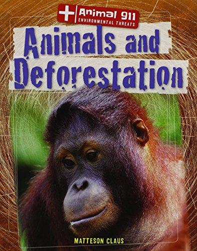 9781433997075: Animals and Deforestation (Animal 911: Environmental Threats)