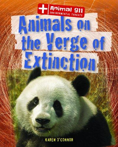 Animals on the Verge of Extinction (Animal 911: Environmental Threats (Gareth Stevens)): O'Connor, ...