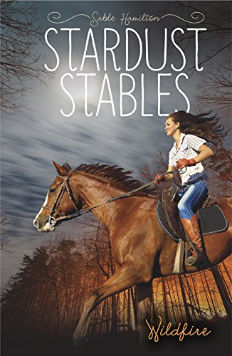 9781434297952: Wildfire (Stardust Stables)