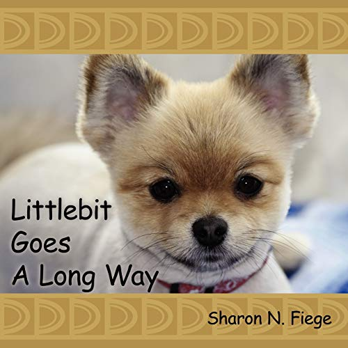 9781434301161: Littlebit Goes A Long Way