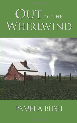 9781434367365: Out of the Whirlwind