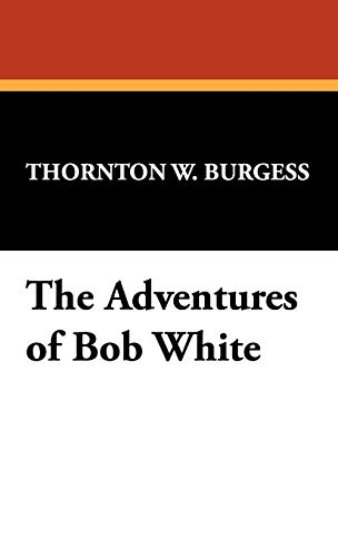 9781434474308: The Adventures of Bob White
