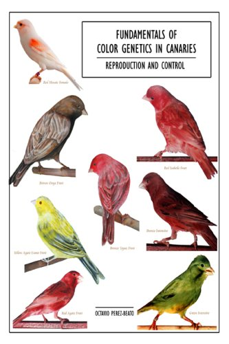 9781434990747: Fundamentals of Color Genetics in Canaries: Reproduction and Control