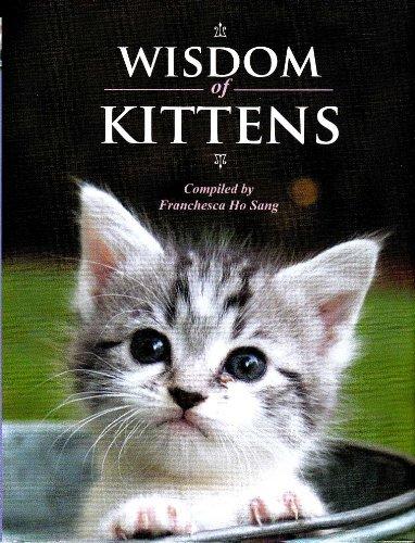 9781435105331: Wisdom of Kittens