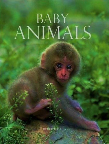 Baby Animals: Fall River Press