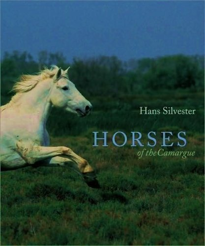 9781435109988: Horses of the Camargue