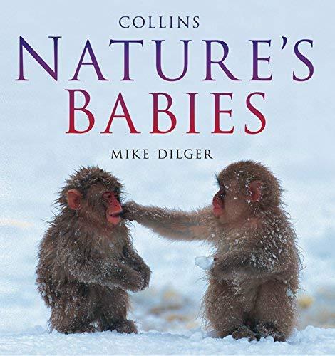 9781435111356: Nature's Babies