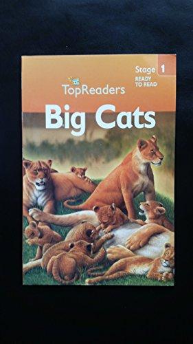 9781435113664: Big Cats