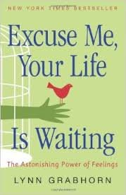 9781435138742: Excuse Me, Your Life is Waiting: The Astonishing Power of Feelings