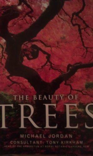 The Beauty of Trees: Michael Jordan