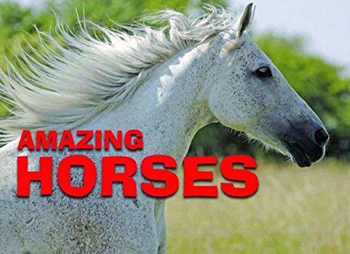 Amazing Horses: Amber Books