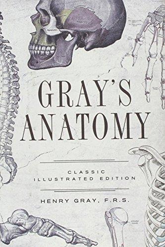 9781435145467: Gray's Anatomy: Classic Illustrated Edition (Fall River Classics)