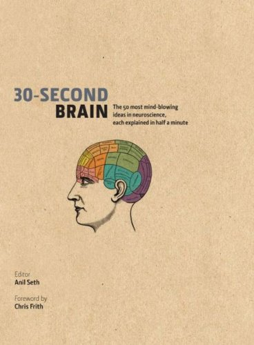 9781435147843: 30-Second Brain