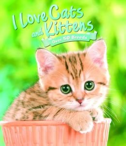9781435155336: I Love Cats & Kittens (Over 50 Breeds)