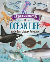 A Curious Collection of Ocean Life &: Quarto