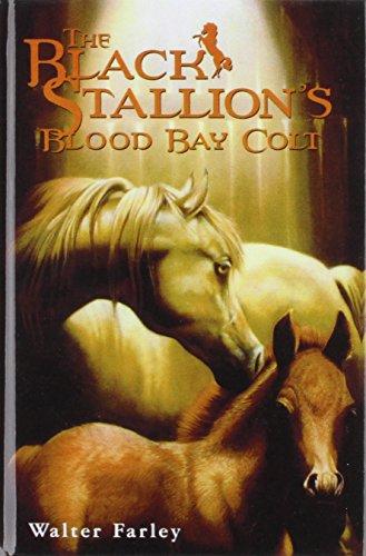 9781435272842: The Black Stallion's Blood Bay Colt (Bullseye Books)