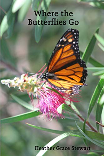 9781435712027: Where the Butterflies Go