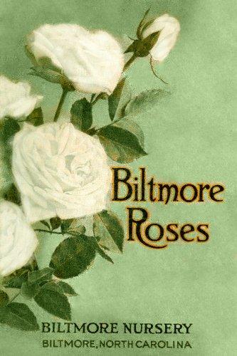 9781435755758: 1913 Biltmore Rose Catalog