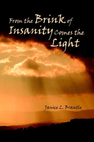 9781435760417: From the Brink of Insanity Comes the Light