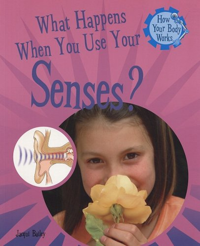 9781435826168: What Happens When You Use Your Senses? (How Your Body Works)