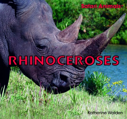 Rhinoceroses (Safari Animals): Walden, Katherine